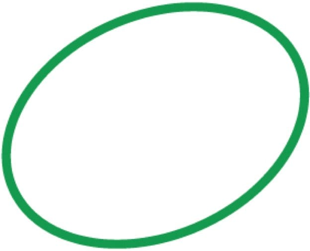 Green Oval Symbol for Who We Are