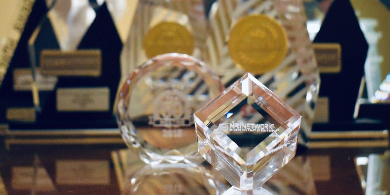SCN MRI Network Awards